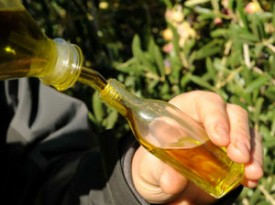 Оливковa олія з Прiорату